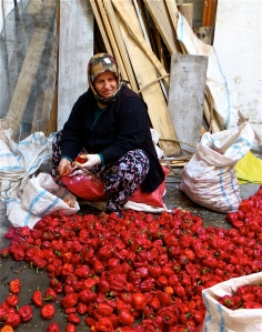 Drying Peppers in Turkey
