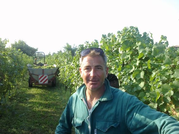 francesco the vine grower